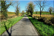H4550 : Aghingowly Road, Aghingowly by Kenneth  Allen