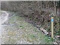 SO4585 : Footpath markers to Flounders' Folly by Fabian Musto