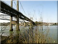 SX4358 : The Tamar Bridges from the Tamar Valley Railway by Roy Hughes