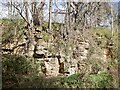 NT7672 : Sandstone crag, Dunglass Dean by Richard Webb