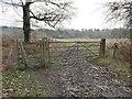 TQ5835 : Two Gates by John P Reeves