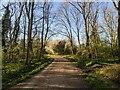TF0820 : Sunny morning by Bob Harvey