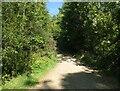 NY2724 : The Cumbria Way, Thorny Plats by Adrian Taylor