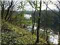 SK6540 : Looking down on Stoke Weir by Alan Murray-Rust