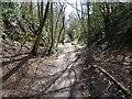SO8792 : Railway Path by Gordon Griffiths