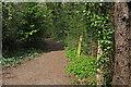 SX8670 : Cycle trail, Decoy Country Park by Derek Harper
