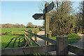 SX8574 : Path signpost near Locks Bridge by Derek Harper