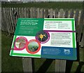 NS5365 : SUDS information panel by Richard Sutcliffe