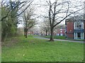 SP3076 : Tree blossom and halls of residence by E Gammie