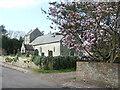 ST3638 : Cherry blossom by Stawell church by Neil Owen