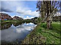SO7293 : River Severn at Bridgnorth by Mat Fascione