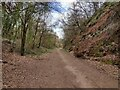 SO8272 : Cycleway and footpath near Stourport-on-Severn by Mat Fascione