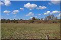 SO8074 : Severn Valley Railway across a field by Chris Allen