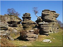 SE2064 : Brimham Rocks by Graham Hogg