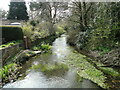 TG1130 : River Bure downstream of Corpusty Mill by Adrian S Pye