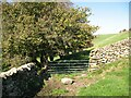 SD2783 : Gate on The Cumbria Way by Adrian Taylor