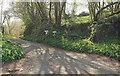 SX7862 : Private driveway by Derek Harper