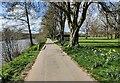 SO8071 : Severn Way along the River Severn by Mat Fascione