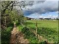 SO7872 : Severn Way along the River Severn by Mat Fascione