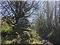 SX2181 : Old Wayside Cross at the entrance to Trekennick Farm, Altarnun by L Nott