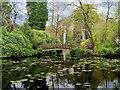 SJ7481 : Golden Brook Pits, The Japanese Garden at Tatton Park by David Dixon