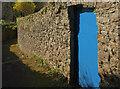 SX9264 : Door in wall, Wellswood Path by Derek Harper