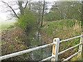 TM0880 : River Waveney downstream from Doit Bridge by Adrian S Pye
