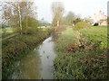 TM1179 : River Waveney upstream from Denmark Bridge by Adrian S Pye