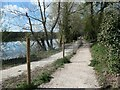 SK2120 : Bisected path, west of Tatenhill Lock by Christine Johnstone