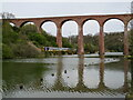 NZ8909 : Larpool Viaduct, near Whitby by Malc McDonald