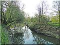 TM1478 : River Waveney in reflective mood #2 by Adrian S Pye