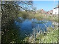 TA0472 : Pond alongside Rainsburgh Lane, Wold Newton by Christine Johnstone