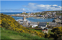 NJ4667 : Findochty Harbour by Anne Burgess