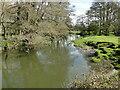 TM2280 : River Waveney downstream from Needham footbridge by Adrian S Pye