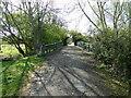 TM2885 : The old Homersfield bridge by Adrian S Pye
