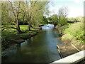 TM2885 : River Waveney upstream from Homersfield roadbridge by Adrian S Pye