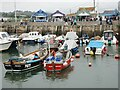 SY4690 : West Bay harbour by Bill Harrison