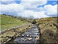 NY0610 : River Calder, upstream by Trevor Littlewood