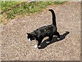 SO4430 : Cat at St. Mary and St. David's church (Kilpeck) by Fabian Musto