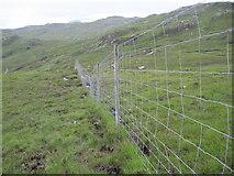 NG8841 : Deer fence on hillside above Allt nan Carnan by Chris Wimbush