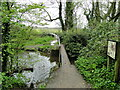 TM3390 : Approaching the site of Ditchingham watermill by Adrian S Pye