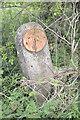 SK9817 : Valve marker post by Bob Harvey