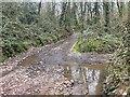 SS8609 : Watery Lane Ford by John Walton