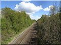 SJ8901 : Rail Bridge View by Gordon Griffiths