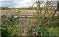 TQ6881 : Mucking Creek looking upstream by David Kemp