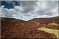 NY2829 : The bridleway north from Skiddaw House by Andy Waddington