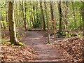 NT5268 : Path crossing the former railway, Gifford by Jim Barton