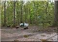NT5268 : Track junction, Gifford Community Woodland by Jim Barton