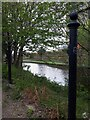 SE2833 : Old gateposts by the canal by Stephen Craven