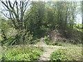 SE8843 : Dropped bridge, Market Weighton - Driffield railway by Christine Johnstone